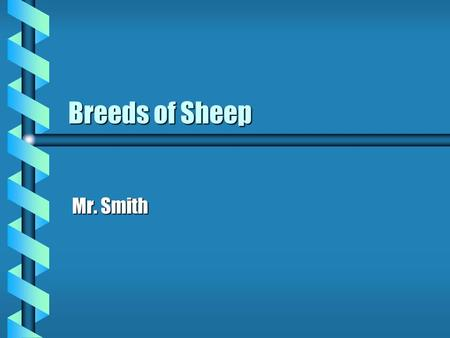 Breeds of Sheep Mr. Smith. Sheep Facts b 5 month gestation b Dual purpose breed Meat, woolMeat, wool b Docking, castration, vaccinating b Wool grading.