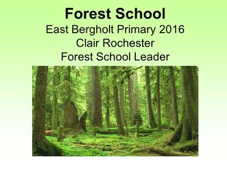 Forest School East Bergholt Primary 2016 Clair Rochester Forest School Leader.