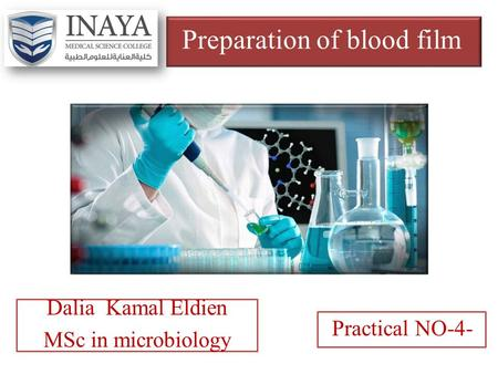 Preparation of blood film Dalia Kamal Eldien MSc in microbiology Practical NO-4-