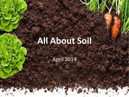 All About Soil April 2014. Soil Soil is made up of rock material that has been broken down over time into tiny grains by wind and rain. Soil also contains.
