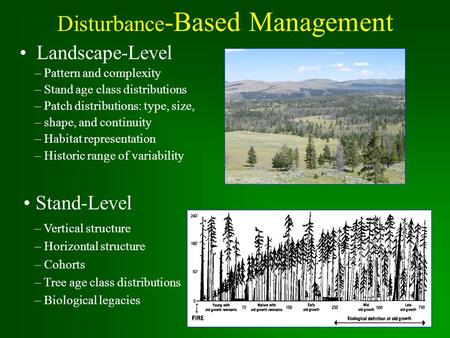 Disturbance -Based Management Landscape-Level – Pattern and complexity – Stand age class distributions – Patch distributions: type, size, – shape, and.