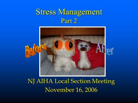 Stress Management Part 2 NJ AIHA Local Section Meeting November 16, 2006.