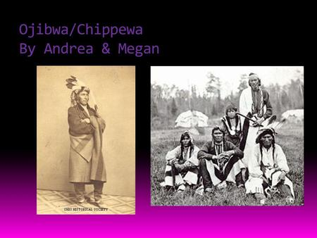 Ojibwa/Chippewa By Andrea & Megan. Food  Here are some pictures of what they ate.  They ate Bison, corn, Berries, Deer, and wild rice.