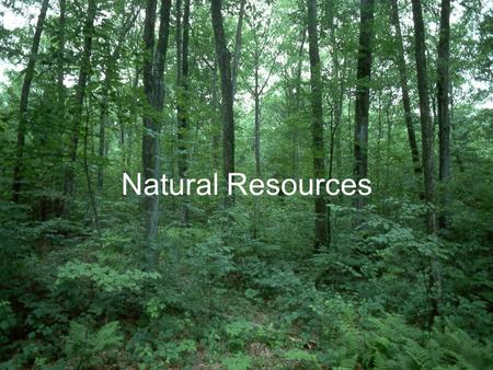 Natural Resources. Renewable Resources: are ones that can be replaced in nature at a rate close to their rate of use Oxygen Trees Food Sunlight.