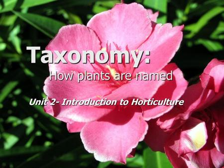 Taxonomy: How plants are named Unit 2- Introduction to Horticulture.
