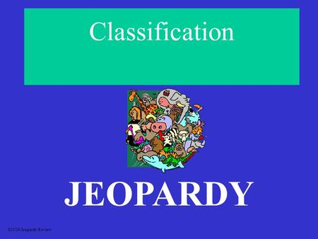 Classification JEOPARDY S2C06 Jeopardy Review ClassificationVocabulary What Kingdom is it? Misc. Early Taxonomy 100 200 300 400 500.