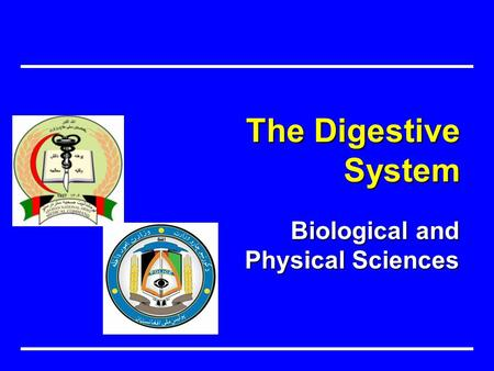 Biological and Physical Sciences The Digestive System.
