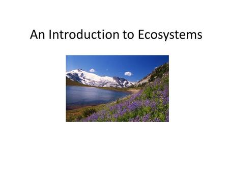 An Introduction to Ecosystems SNC 1DI. Unit Objectives By the end of this unit, I should be able to: – Understand the similarities and differences between.