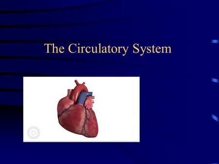The Circulatory System. It's a muscle It's located a little to the left of the middle of your chest, and it's about the size of your fist.