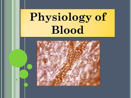 Physiology of Blood. amazing facts about blood The human body manufactures 17 million red blood cells per second. If stress precipitates a need the body.