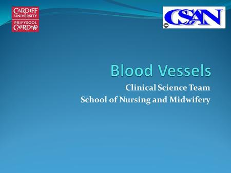Clinical Science Team School of Nursing and Midwifery.