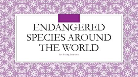 ENDANGERED SPECIES AROUND THE WORLD By: Bailey Johnston.