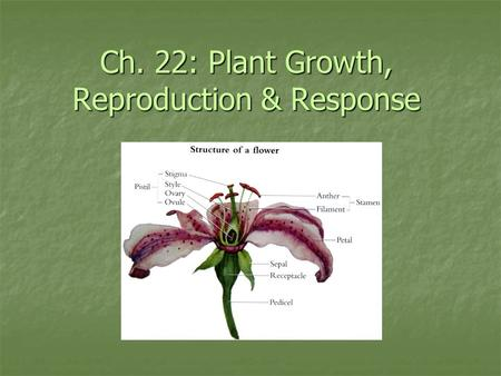 Ch. 22: Plant Growth, Reproduction & Response. Ch. 22: Sexual Reproduction in Plants Plants generally reproduce sexually, though many can also reproduce.