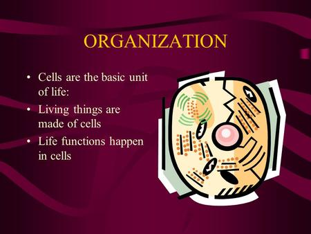 ORGANIZATION Cells are the basic unit of life: Living things are made of cells Life functions happen in cells.