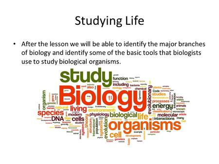 Studying Life After the lesson we will be able to identify the major branches of biology and identify some of the basic tools that biologists use to study.