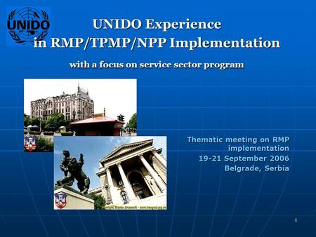 1 UNIDO Experience in RMP/TPMP/NPP Implementation with a focus on service sector program Thematic meeting on RMP implementation Thematic meeting on RMP.