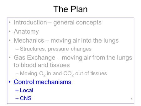 The Plan Introduction – general concepts Anatomy Mechanics – moving air into the lungs –Structures, pressure changes Gas Exchange – moving air from the.