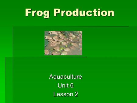 Frog Production Aquaculture Unit 6 Lesson 2. Objectives  List problems associated with frog production  Describe the requirements of frog products.