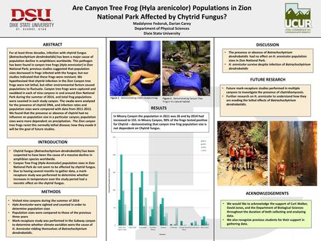 Are Canyon Tree Frog (Hyla arenicolor) Populations in Zion National Park Affected by Chytrid Fungus? Madalynne Fedoruk, Darian Carey Department of Physical.
