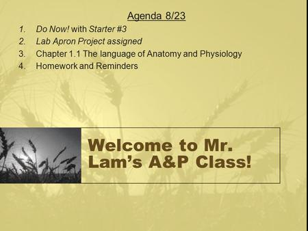 Welcome to Mr. Lam's A&P Class! Agenda 8/23 1.Do Now! with Starter #3 2.Lab Apron Project assigned 3.Chapter 1.1 The language of Anatomy and Physiology.