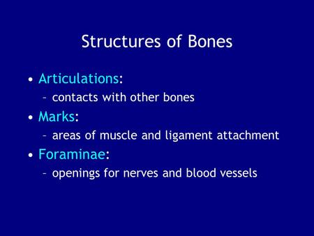 Structures of Bones Articulations: –contacts with other bones Marks: –areas of muscle and ligament attachment Foraminae: –openings for nerves and blood.