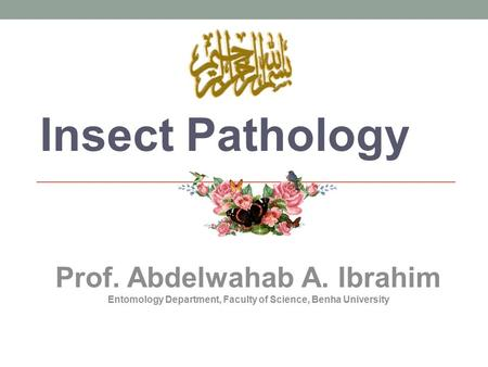 Insect Pathology Prof. Abdelwahab A. Ibrahim Entomology Department, Faculty of Science, Benha University.