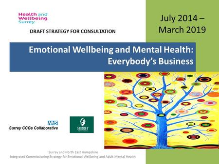 July 2014 – March 2019 Emotional Wellbeing and Mental Health: Everybody's Business DRAFT STRATEGY FOR CONSULTATION.