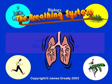Biology Biology Chapter 34 The Breathing System Copyright © James Greally 2003.