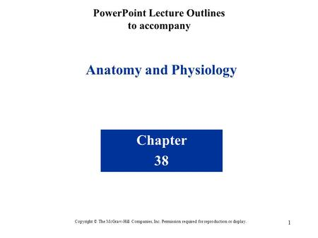 1 PowerPoint Lecture Outlines to accompany Anatomy and Physiology Chapter 38 Copyright © The McGraw-Hill Companies, Inc. Permission required for reproduction.