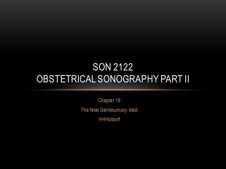 Chapter 16 The fetal Genitourinary tract HHHoldorf SON 2122 OBSTETRICAL SONOGRAPHY PART II.