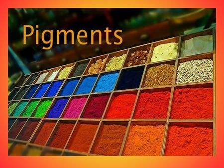 Summary I. Introduction II. Pigment's origins III. Pigment's usages IV. Experience.