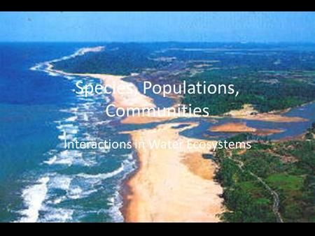 Species, Populations, Communities Interactions in Water Ecosystems.