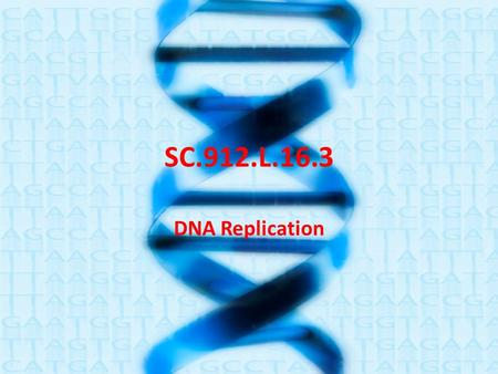 SC.912.L.16.3 DNA Replication. – During DNA replication, a double-stranded DNA molecule divides into two single strands. New nucleotides bond to each.