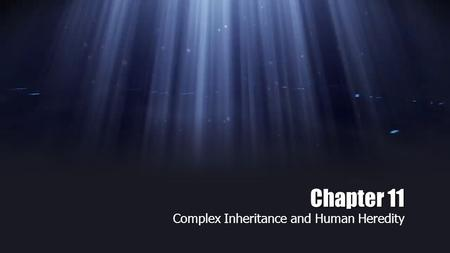 Chapter 11 Complex Inheritance and Human Heredity.