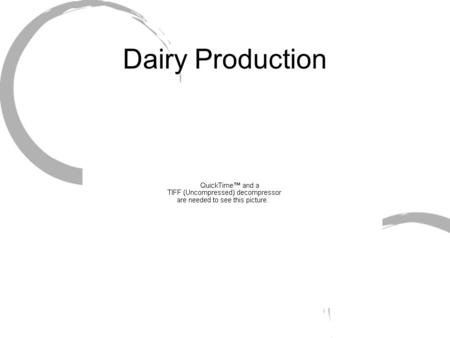 Dairy Production. History Large component of American Agriculture Account for 13% of farm commodities Unique in only animal production area intended.