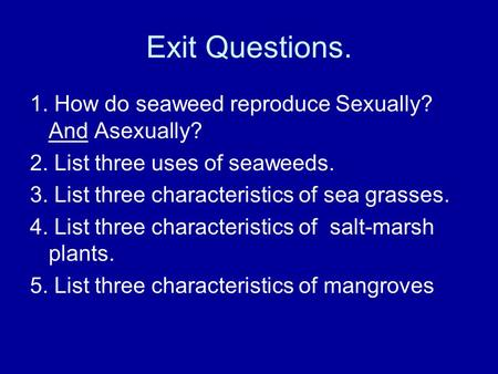 Exit Questions. 1. How do seaweed reproduce Sexually? And Asexually? 2. List three uses of seaweeds. 3. List three characteristics of sea grasses. 4. List.