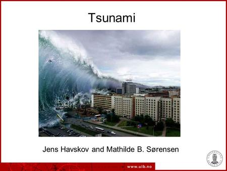 Tsunami Jens Havskov and Mathilde B. Sørensen. What is a tsunami A tsunami is an abnormal large wave hitting the coast.