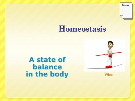 A state of balance in the body Whoa Notes. Definition of Homeostasis homeo = same; stasis = standing Homeostasis is the term we use to describe the constant.
