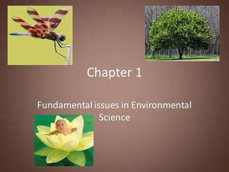 Chapter 1 Fundamental issues in Environmental Science.