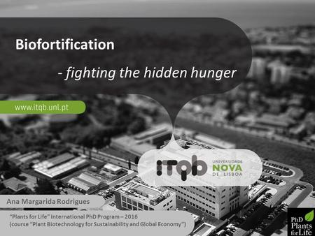 "Biofortification - fighting the hidden hunger Ana Margarida Rodrigues ""Plants for Life"" International PhD Program – 2016 (course ""Plant Biotechnology for."