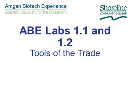 ABE Labs 1.1 and 1.2 Tools of the Trade. CHAPTER 1: Some Tools of the Trade Lab 1.1 2014.