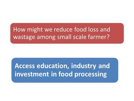 How might we reduce food loss and wastage among small scale farmer? Access education, industry and investment in food processing.