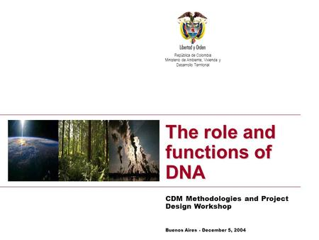 Vice – Ministry of Environment Climate Change Mitigation Group The role and functions of DNA CDM Methodologies and Project Design Workshop República de.