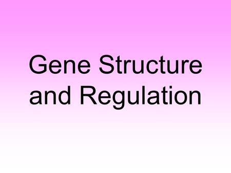 Gene Structure and Regulation. Gene Expression The expression of genetic information is one of the fundamental activities of all cells. Instruction stored.