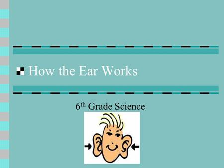 How the Ear Works 6 th Grade Science. Parts of the Ear The ear is divided into 3 main parts: Outer Ear Middle Ear Inner Ear.