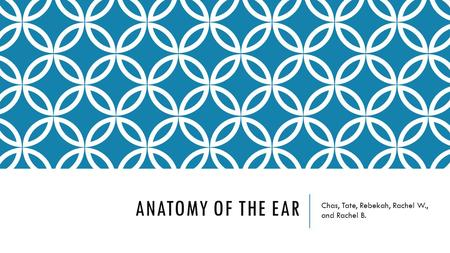 ANATOMY OF THE EAR Chas, Tate, Rebekah, Rachel W., and Rachel B.