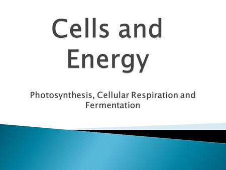 Photosynthesis, Cellular Respiration and Fermentation.