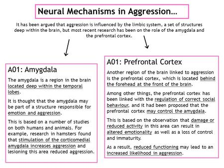 Neural Mechanisms in Aggression… It has been argued that aggression is influenced by the limbic system, a set of structures deep within the brain, but.