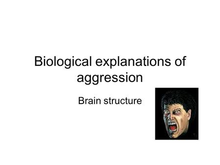 Biological explanations of aggression Brain structure.