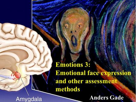 Gade Emotions 3: Emotional face expression and other assessment methods Anders Gade.